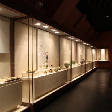 5 Types Of Museum Display Cases Ujoy Display Showcase